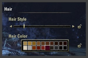 Character creation - What color and style will your hair be?
