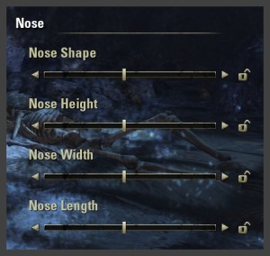 Character creation - Nose sliders